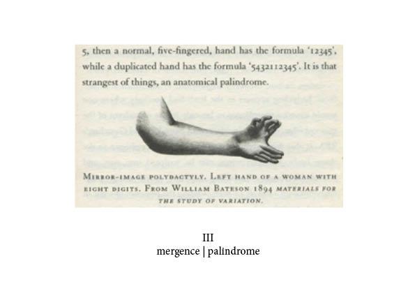 http://juliaamelie.com/files/gimgs/24_mutant-book-print31.jpg